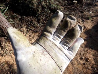 Schnittschutzhandschuhe Motorsäge