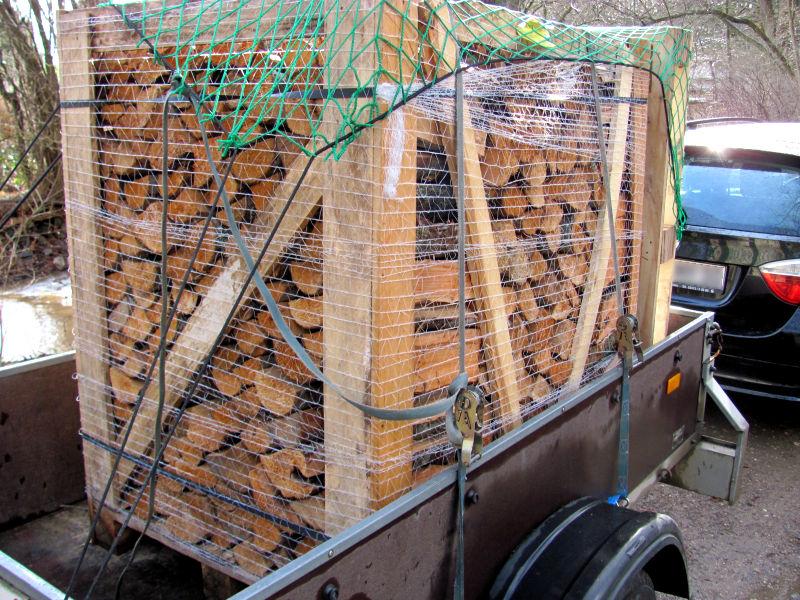 Brennholz fertig kaufen