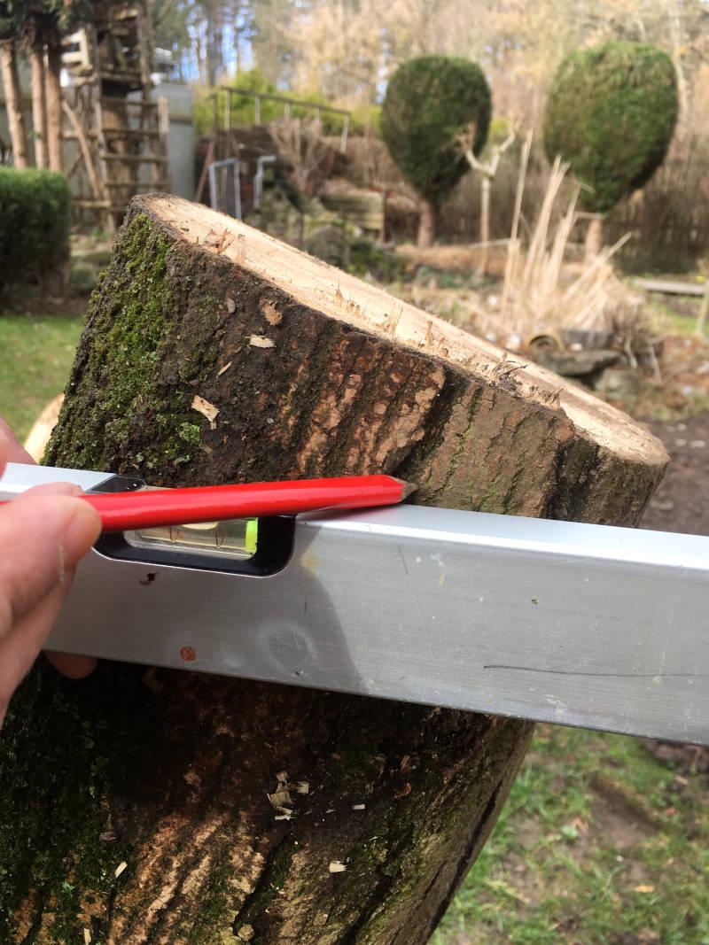 Baumstamm Linie ziehen
