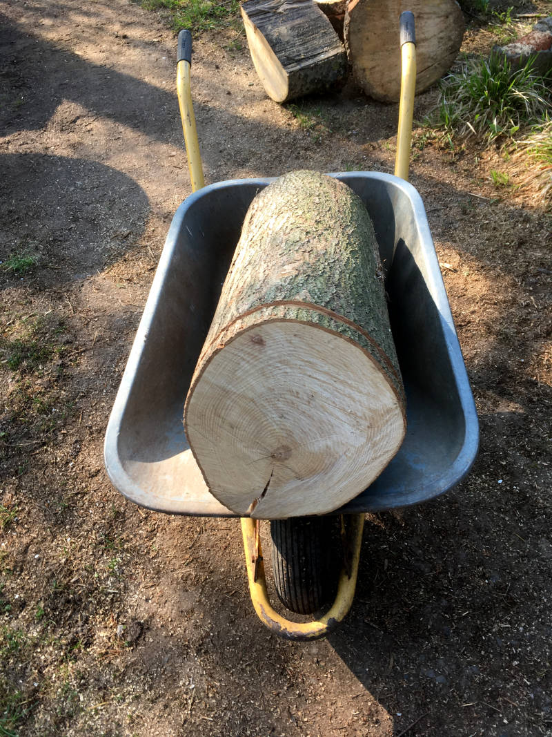 Schubkarre Holzstamm