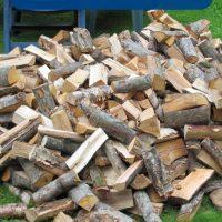 Brennholz Baumarkt