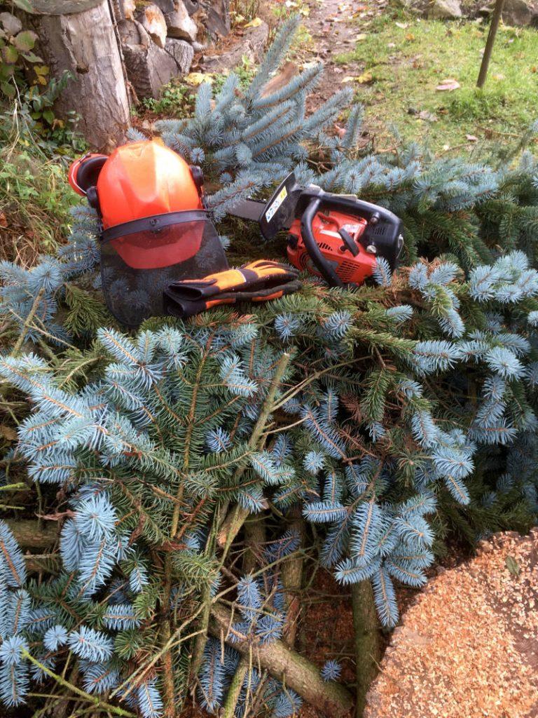Baumpflegesäge Dolmar