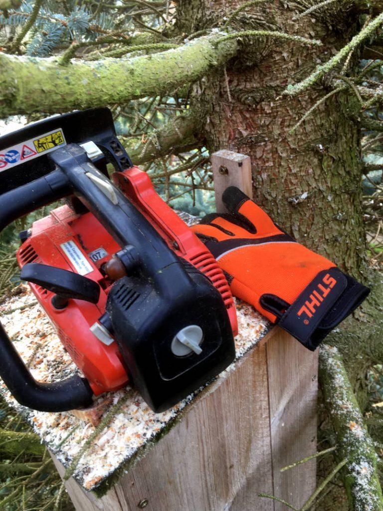 Baumpflegesäge im Einsatz