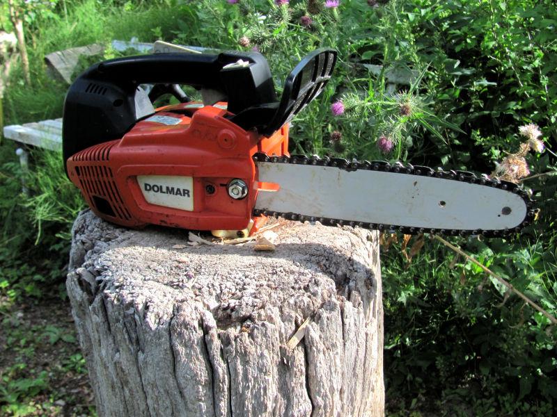Baumpflegesäge