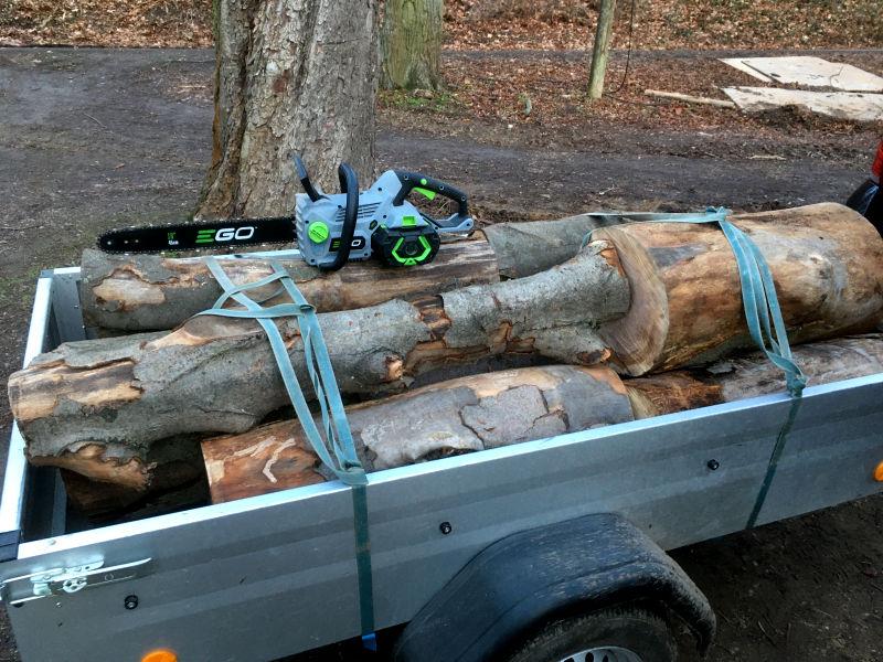 Akku Kettensäge für Wald