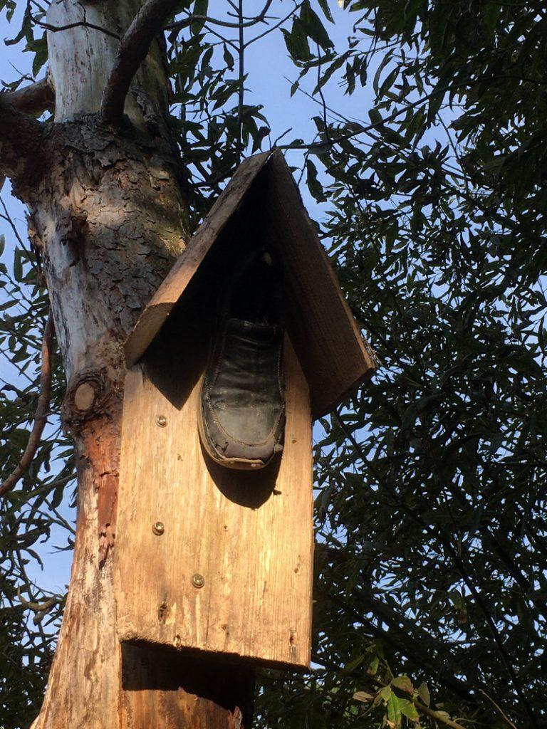Schuhe als Vogelhaus
